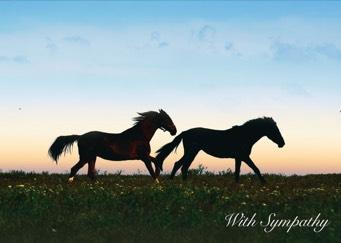 Equine Sympathy Card